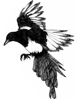 All writers are magpies...